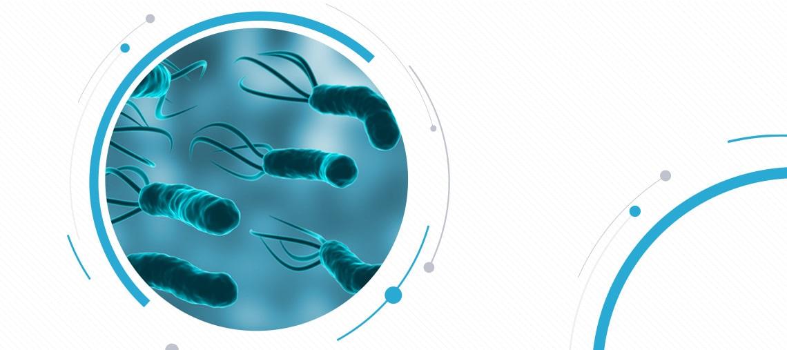 Helicobacter infectie